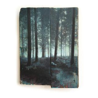 Wald-12-21