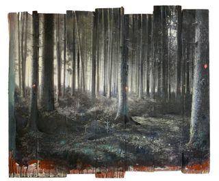 Wald-13-20