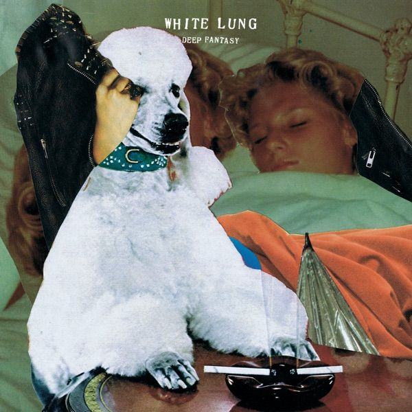 White Lung Snake Jaw