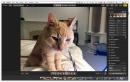 Mac OS High Sierra makes the Mac a teeny, tiny bit better — for free