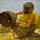 """""""Медена земја"""" – номиниран за најдобар документарец на """"Европските филмски награди"""""""