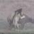 Тепачка на животни