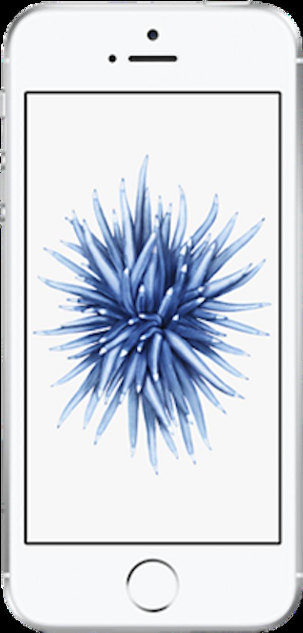 Apple iPhone SE large image