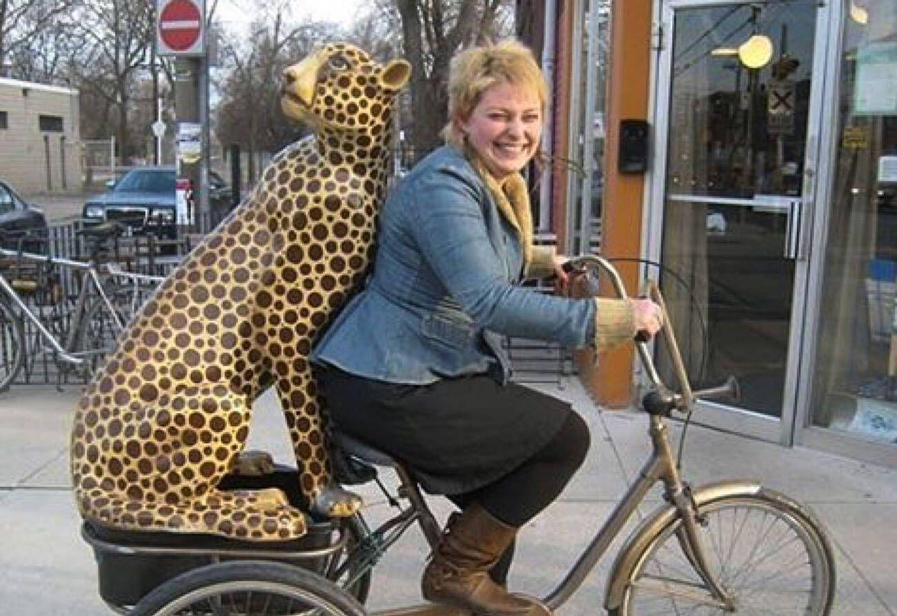 Toronto bar on the hunt for stolen cheetah