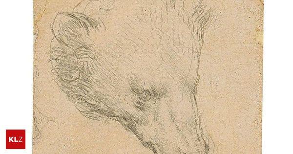 Da Vinci-Zeichnung: Ein kleiner Bär um 14 Millionen Euro