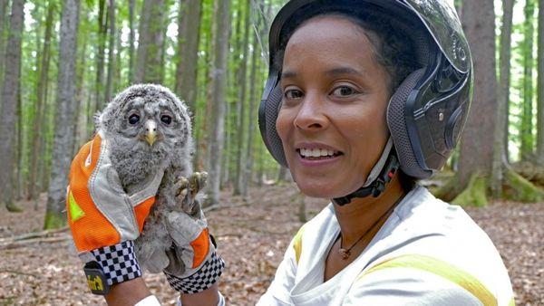 Pia und die wilden Tiere bei KiKA nochmal sehen: Wiederholung der Tierreihe online und im TV