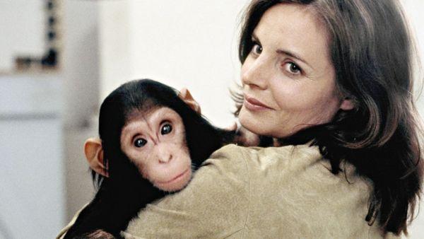 Tierärztin Dr. Mertens vom Samstag: Wiederholung von Episode 8, Staffel 4 online und im TV