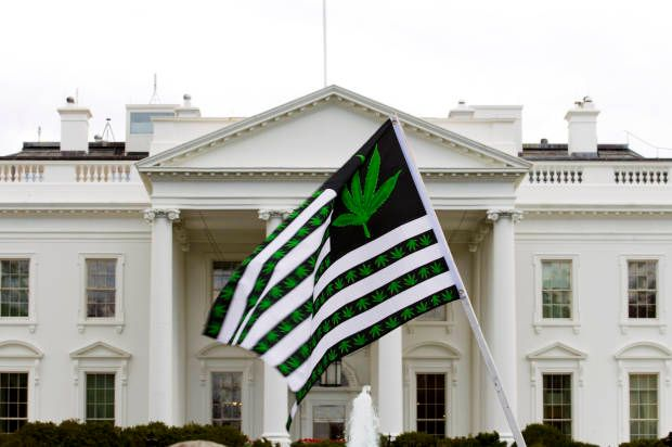 Washington may have finally found bipartisan consensus with Congressional Cannabis Caucus > All Salon, Bipartisanship, cannabis, Cannibus Caucus, congress, Media, Politics, weed > PublicaLog Lastest News