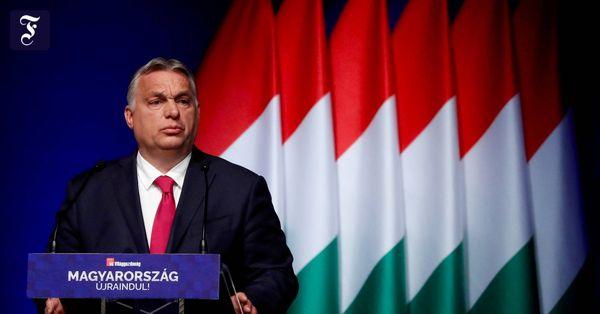 """Gesetzentwurf im Parlament: Ungarns Regierungspartei will """"Werbung"""" für Homosexualität verbieten"""