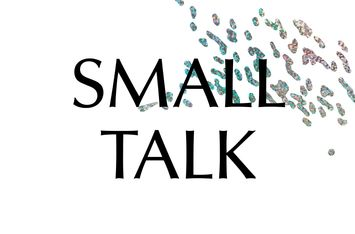 SMALL TALK on ableism & able-bodiedness w/ Anaïs van Ertvelde