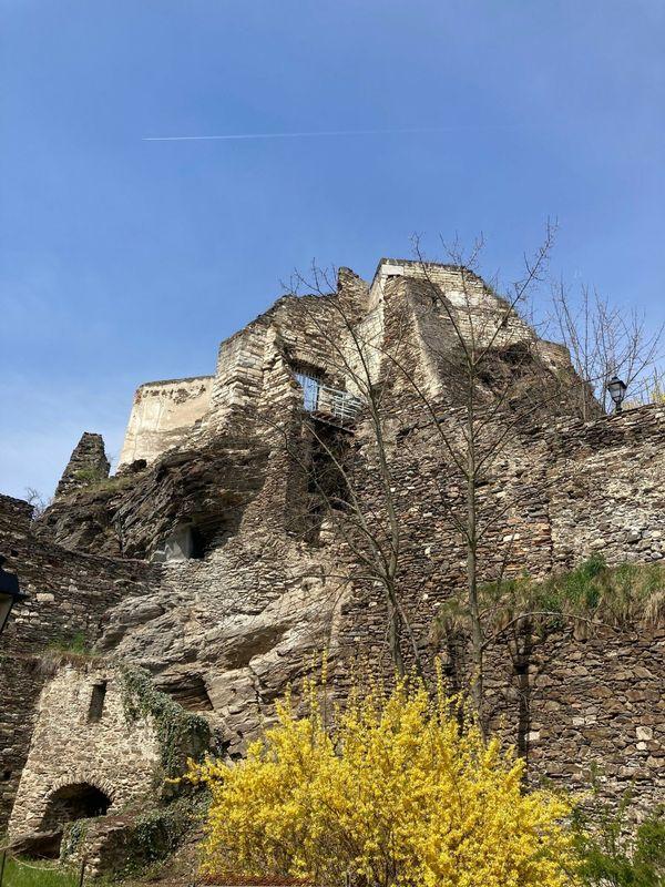 Stadt Krems übernimmt die Ruine Rehberg und setzt Sanierung fort