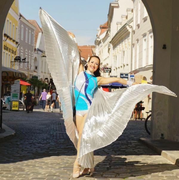 Stadt Krems: Artisten, Künstler und Aktionen