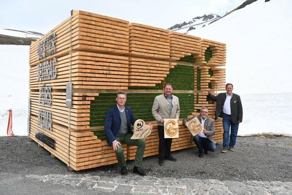 Natur: Holzinstallation am Großglockner