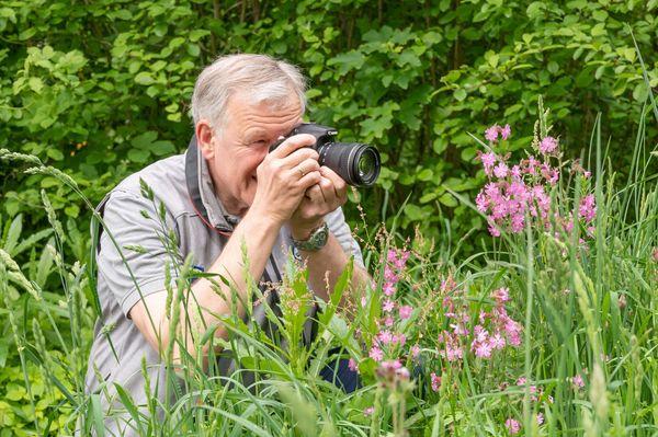 Natur im Garten:: Gemeinsam für ein blühendes Niederösterreich – Fotowettbewerb bis 1. August 2021