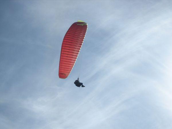 Flugunfall Urlauber stürzte mit Paragleitschirm ab und flüchtete