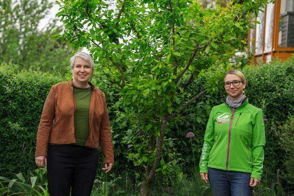 Aktion: Bad Haller Grüne verschenken Bäume