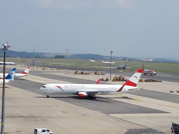 Flughafen Wien Österreichs größte Photovoltaik-Anlage entsteht