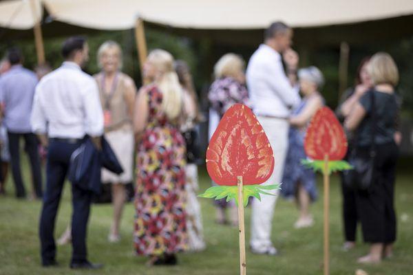 Erdbeeren: Reinerlös von Styriarte-Deko an Mädchenzentrum gespendet