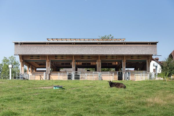 Landbaukultur-Preis: Rinderstall von Hausruck Wagyu wurde ausgezeichnet