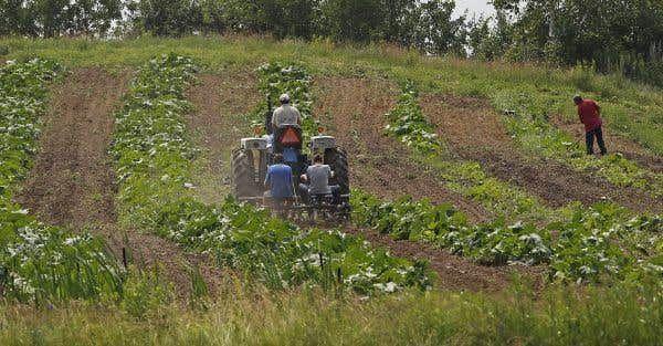 Le point sur les taxes foncières agricoles