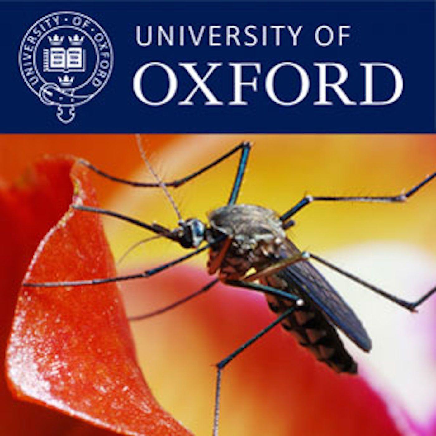Optimising malaria treatment