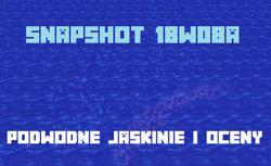 Snapshot 18w08a - migawka dla przyszłych aktualizacji