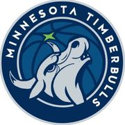【NBA暑假系列2018(五)】一家團聚—Minnesota Timberbulls