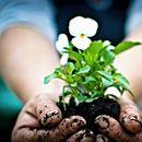 Грижата околу градината го чува вашето здравје