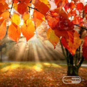 Што можат да очекуваат Хороскопските знаци оваа есен