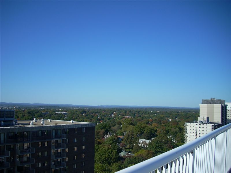 The Excelsior II Luxury Apartments rental