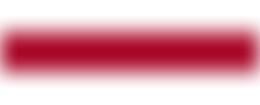 Logo partnera - sandecja