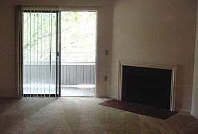 Oak Brook Apartments for rent