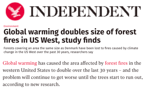 More Spectacular Fraud About Forest Fires