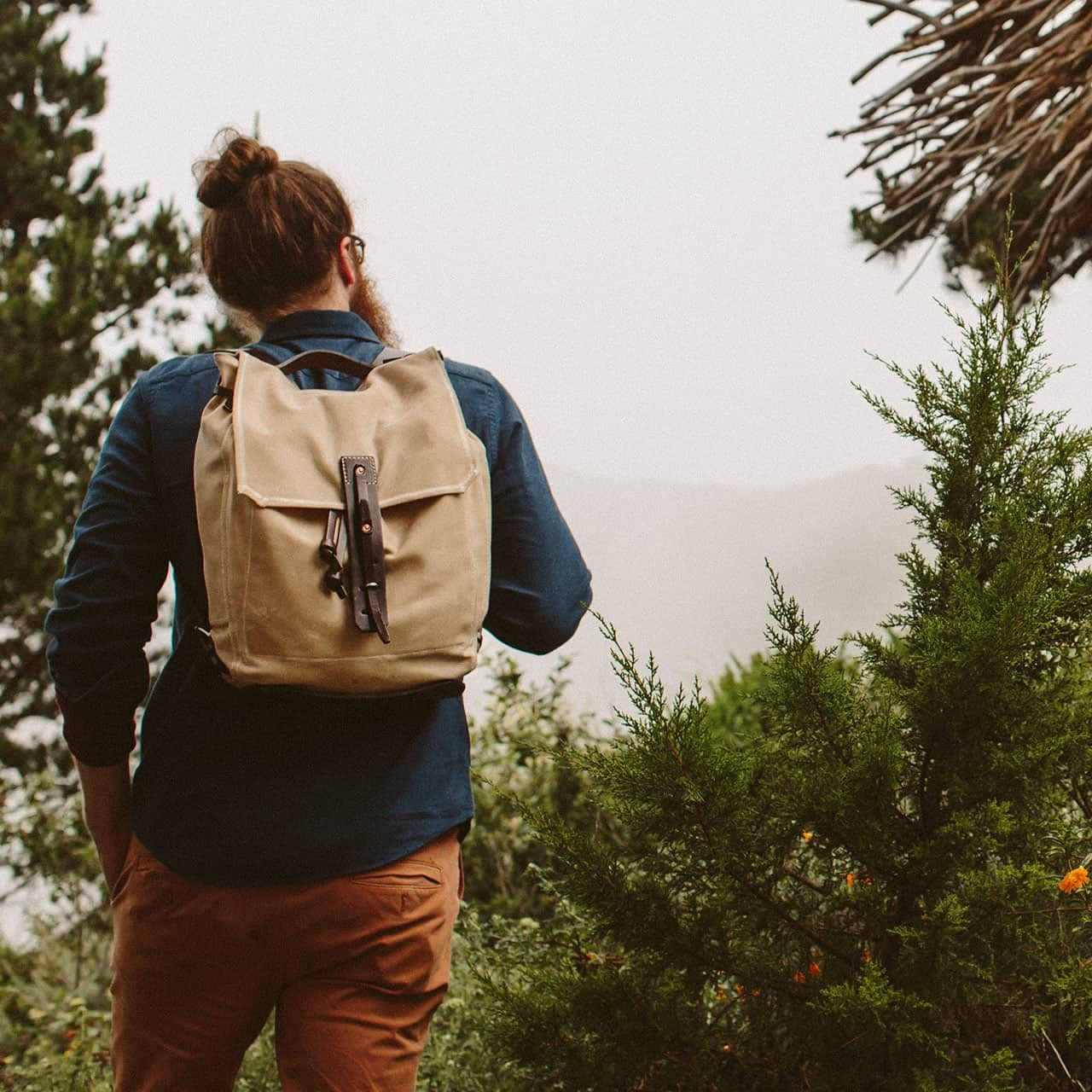 Simple Backpack in Color Sand worn on the back of a man traveling through Evergreens