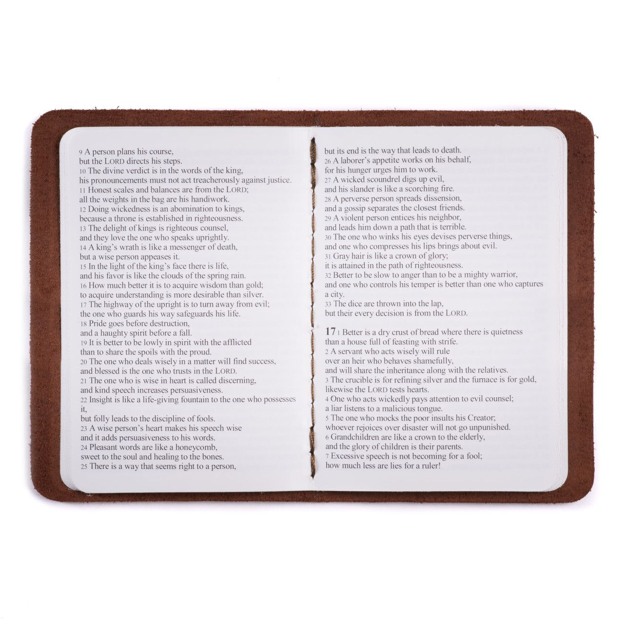 leather book of proverbs in chestnut leather with the gospel