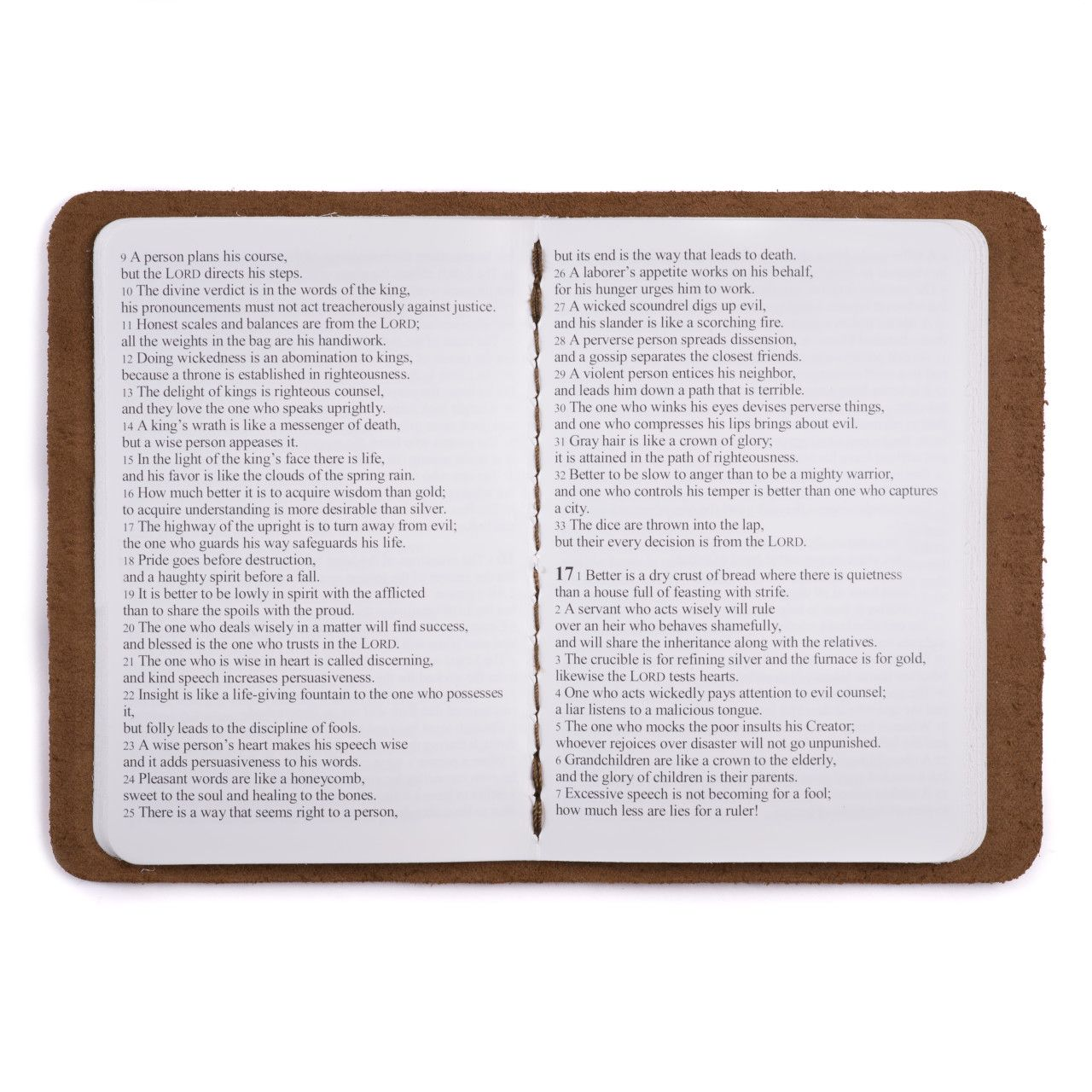 leather book of proverbs in dark coffee brown leather with the gospel
