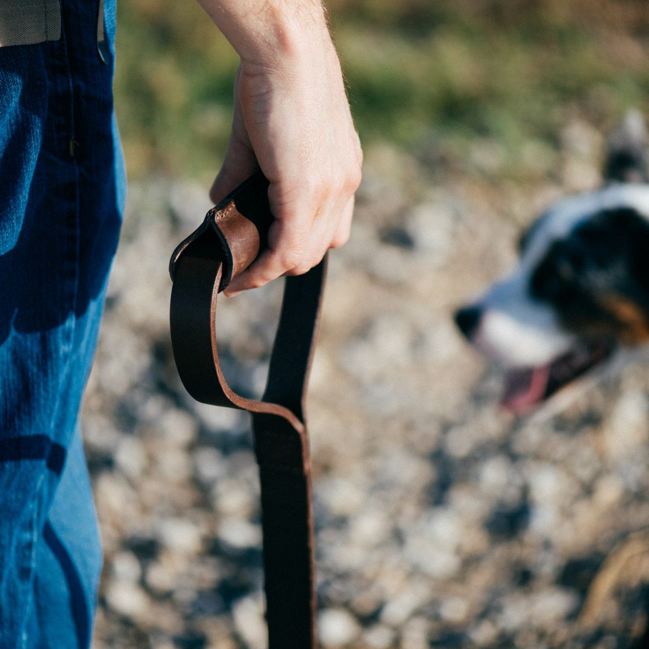 A man in blue trousers holding a leather dog leash in dark coffee brown leather in his hand