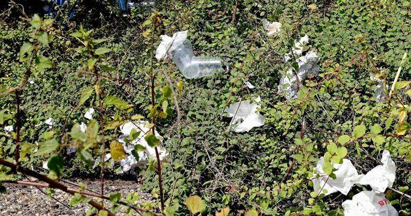 Keine Abfallbehälter installiert: Müllprobleme am Abteiberg in Mönchengladbach
