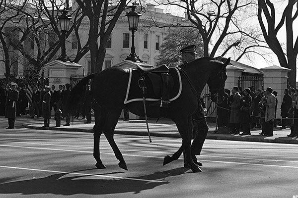 [Image: riderlesshorse-large.jpg]