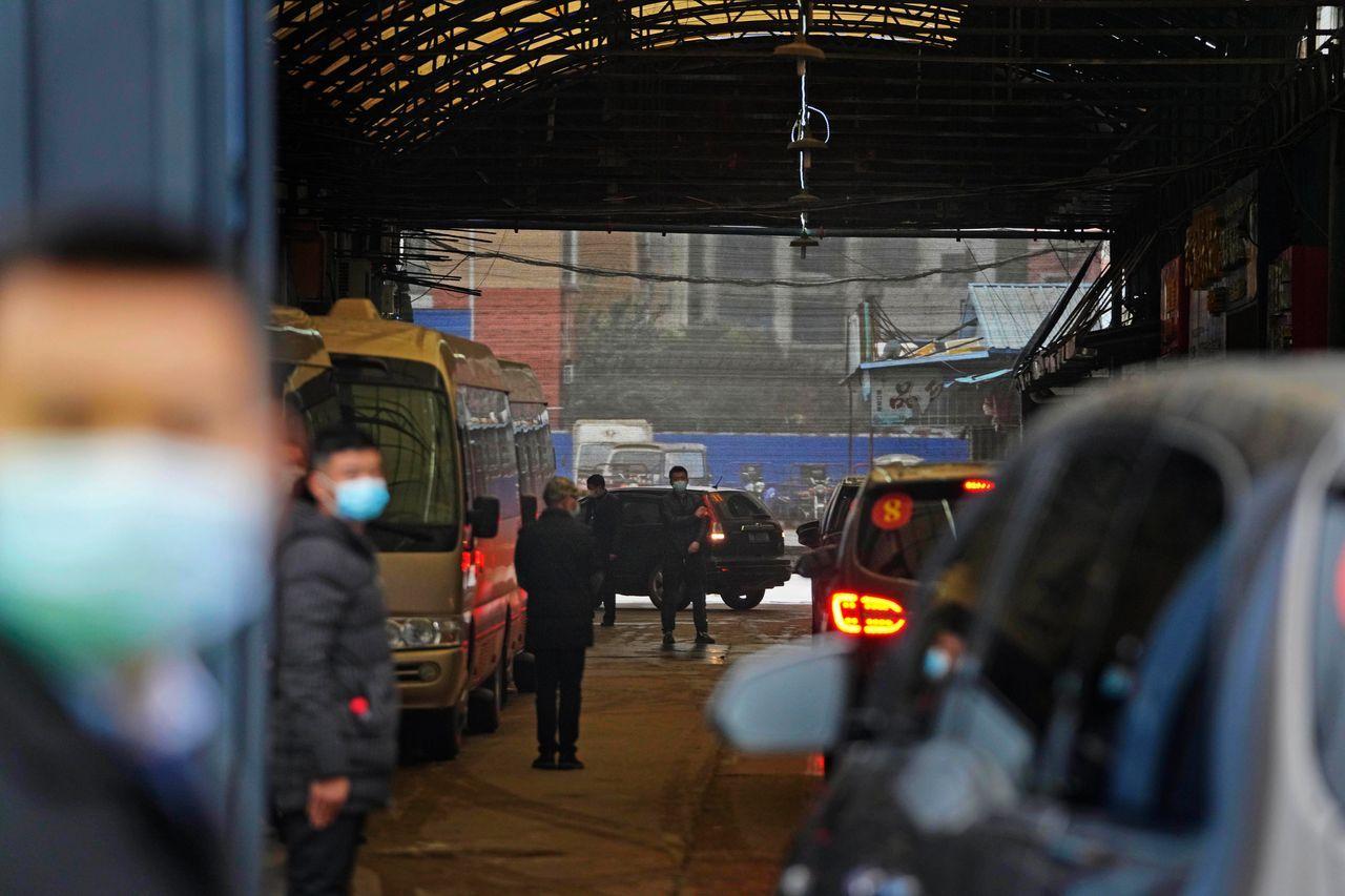 WHO专家组自从结束了在酒店的两周隔离后,已经实地探访了武汉的华南市场,许多首批感染者都被发现与该市场有关。