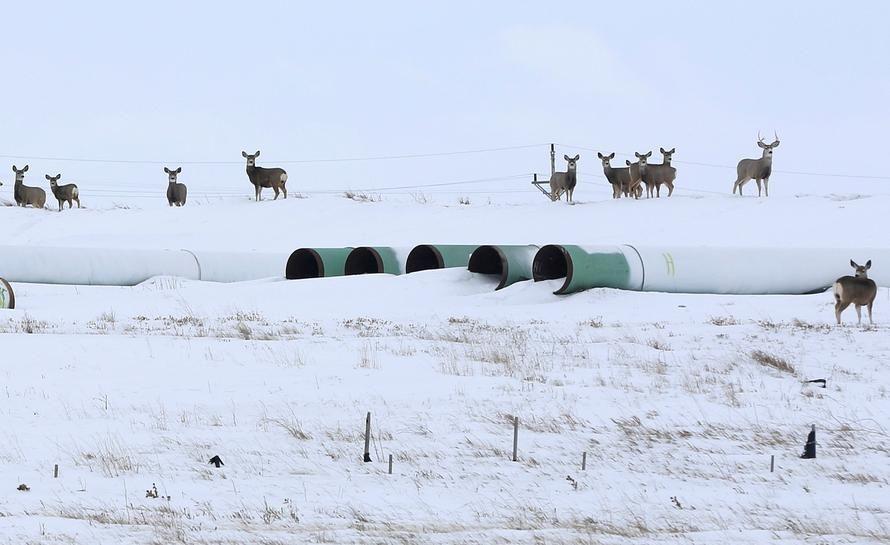Keystone XL pipeline: A 'Canada First' energy plan?
