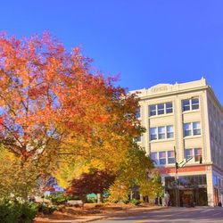 fall photo of historic Kress building in downtown Asheville NC
