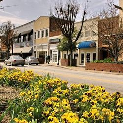 Photo of Hendersonville Shops Down Town