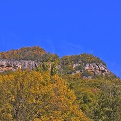 Photo of Exposed Rock and Golden Leaves