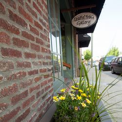 Photo of Flowers in Front of Leapin' Frog Gallery