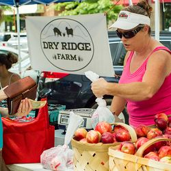photo of woman buying local apples from Dry Ridge Farm at the Biltmore Park Farmer's Market in south Asheville