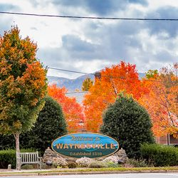 Photo of Waynesville Sign Surrounded by changing Fall LEaves
