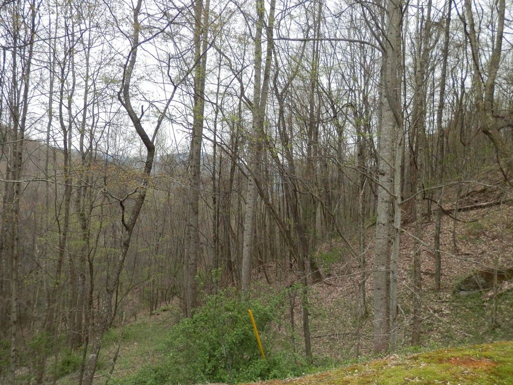 Lot #1 Village Lane #1 in Waynesville, North Carolina 28786 - MLS# 559898