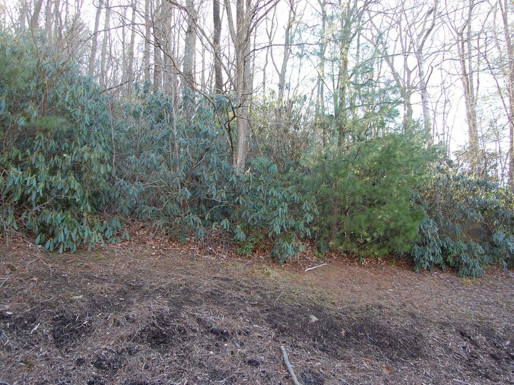 Lot 12 Heather Marie Drive #12 in Hendersonville, North Carolina 28792 - MLS# 576235