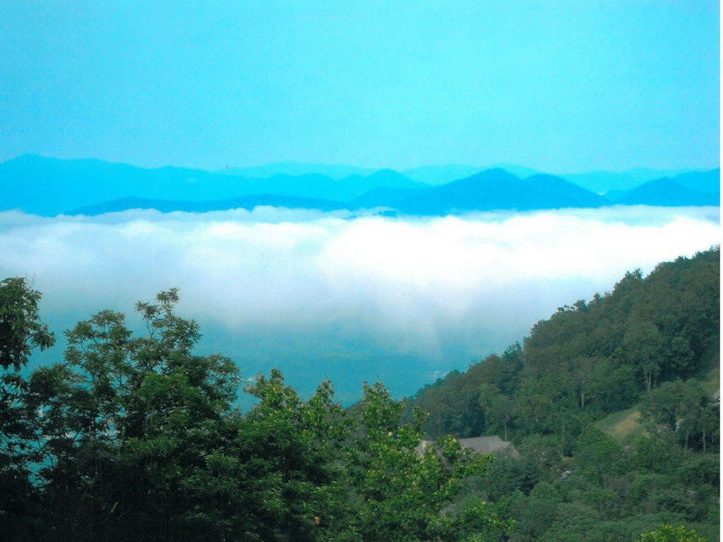Image 15 for 678 Altamont View in Asheville, North Carolina 28804 - MLS# 580792